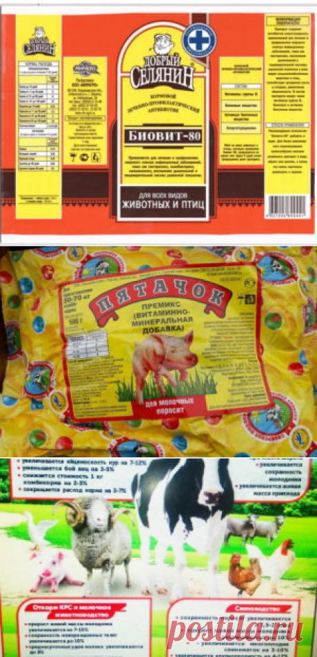 Влияние премиксов «Протодарвит и «Протосельвит» в рационах кроликов на мясную продуктивность - БиоКорова