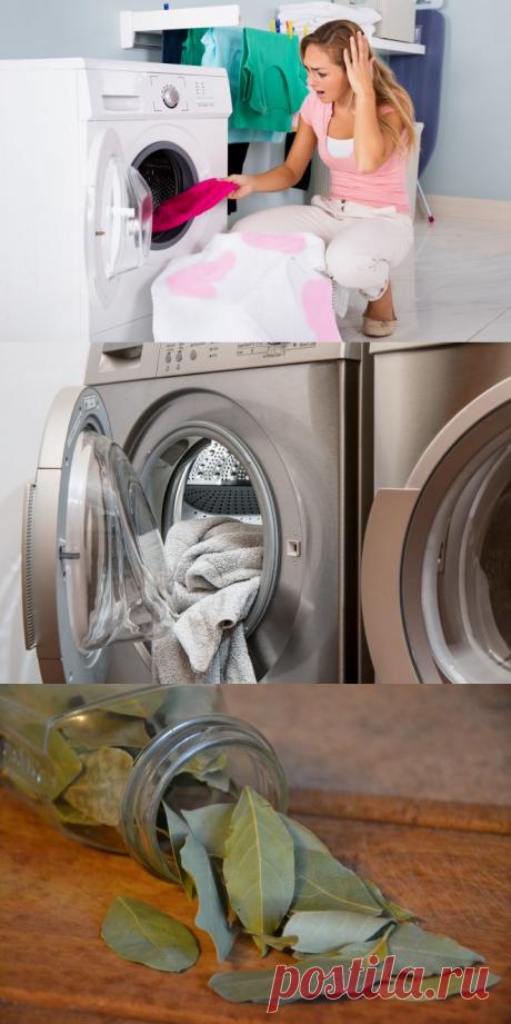 Как спасти окрашенную одежду после стирки ? Нужно только несколько лавровых листьев