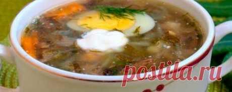 Капустный суп с грибами и щавелем | Кулинарный портал