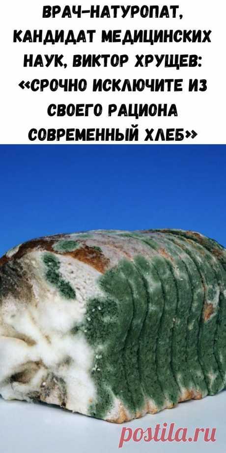 Врач-натуропат, кандидат медицинских наук, Виктор Хрущев: «Срочно исключите из своего рациона современный хлеб» - Советы для тебя