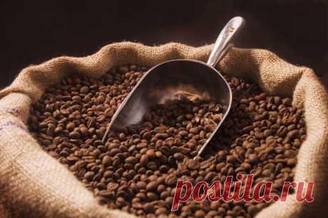 Обзор широкой палитры сортов и видов кофе.