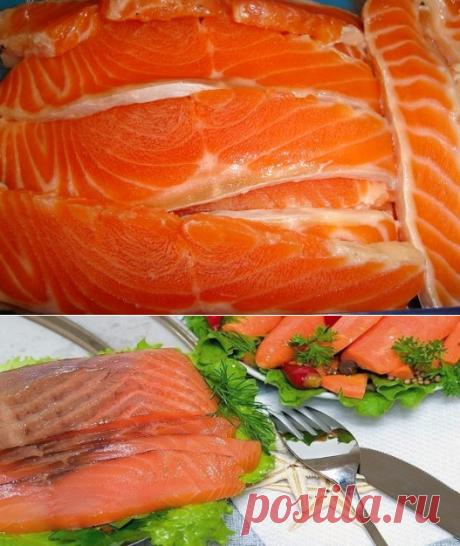 Красная рыба засоленная в морозилке   Четыре вкуса