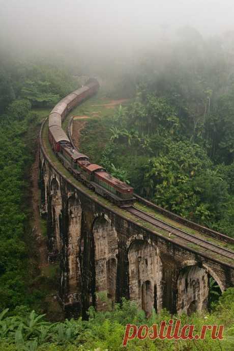 Поезд в горах Шри-Ланки. Автор фото — Михаил Туркеев: nat-geo.ru/photo/user/46662/
