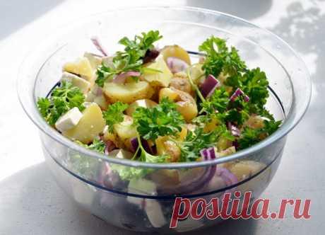 SALAD DAY. Rural salad - nine options