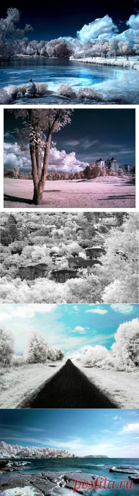 Инфракрасная фотография • НОВОСТИ В ФОТОГРАФИЯХ