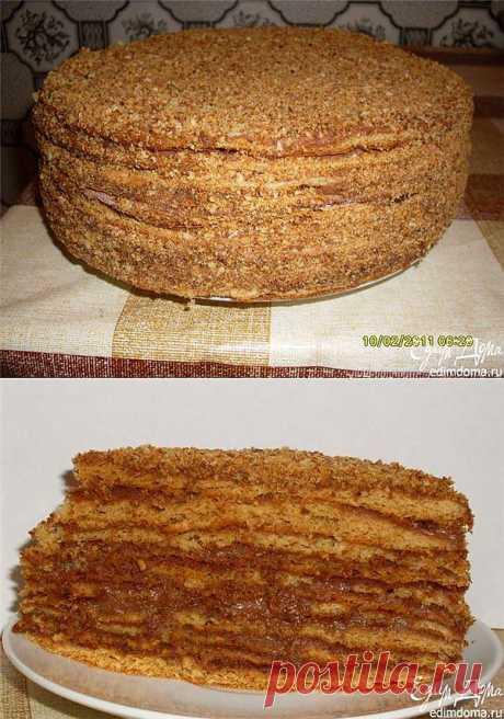 Как приготовить торт медово-шоколадный рецепт блюда с фото