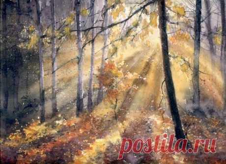 Начало осени, прекрасная пора. Лесные пейзажи написанные акварельными красками. Художник Malgorzata Szczecinska