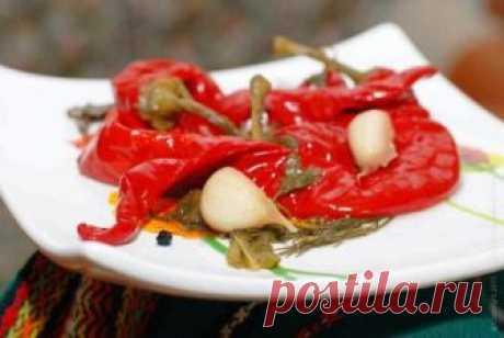 Острый перец по-армянски на зиму Армянская кухня любима многими за ее пристрастие к овощам, зелени, ароматным приправам. Не последнее место в ней занимает маринованный и соленый перец. Овощи армянки предпочитают заготавливать на зиму…