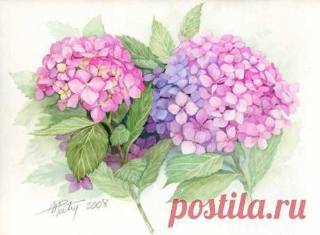 Цветочные картинки для творчества
