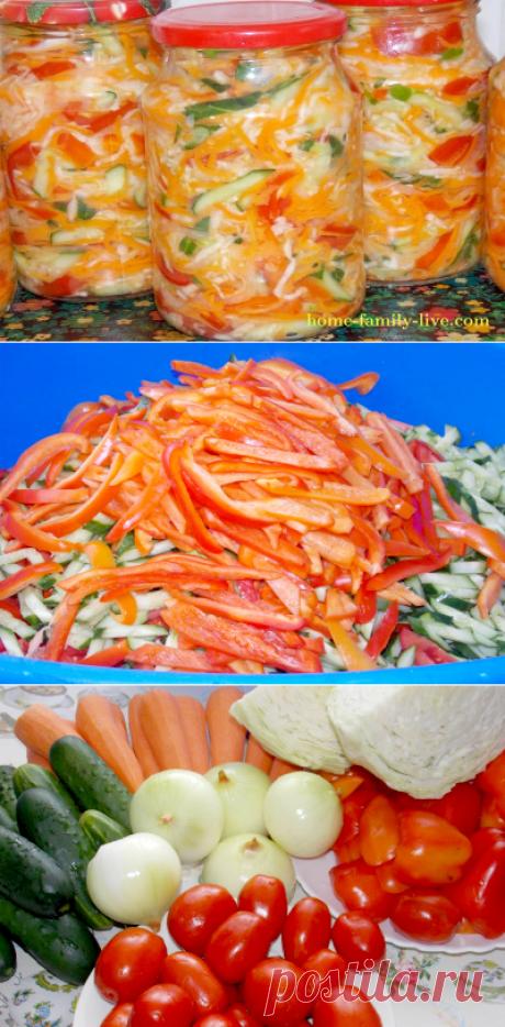 Quien quiere preparar la ensalada de hortalizas para el invierno\/sitio con poshagovymi por las recetas de la foto para aquellos