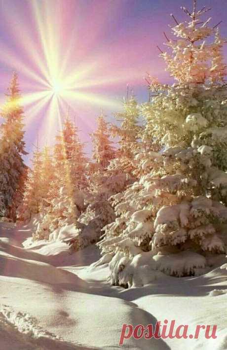 Зимнее утро❄️💥  Утро полное надежды и любви...☃️такое я желаю всем 💝  Шикарная работа нашего Создателя Бога!.Снежный пейзаж...Прекрасное красочных зимнее утро.Похоже на рождественскую звезду!Сказочное фото. 👍