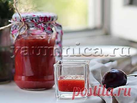 Вкусный рецепт аджики из слив