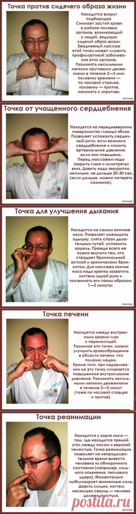 МАССАЖ ПО ТОЧКАМ-Биология