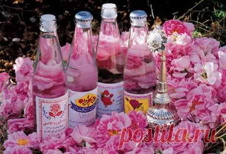 О целебных свойствах и способах применения розового масла - Народная медицина - медиаплатформа МирТесен