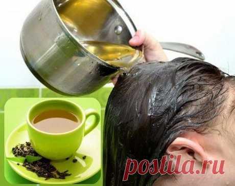 Кондиционер для волос из зеленого чая — Полезные советы