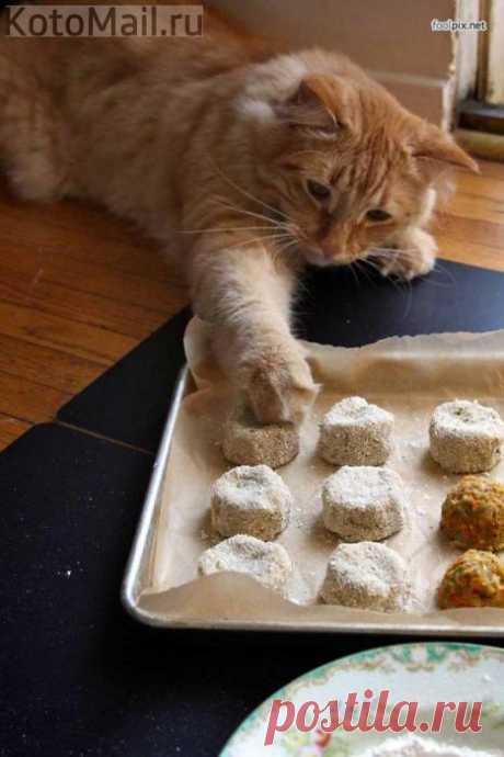 Отличный помощник на кухне!