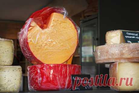 Сырные советы. Как сохранить сыр свежим? — Полезные советы