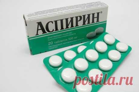Аспирин для комнатных цветов. Тонкости применения