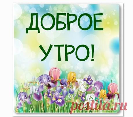 Gyazo - Загрузки