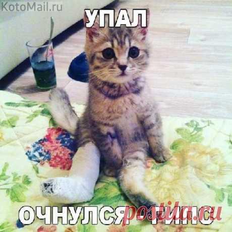 Как в кино... | KotoMail.ru