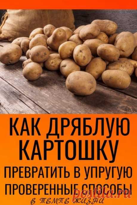 Проверенные способы, как дряблую картошку превратить в упругую | В темпі життя