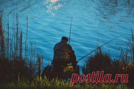 Внимание рыбак! Это категорически запрещено делать! | 🐟