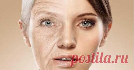 Anti-aging diet for stimulation of production of collagen. In fight for beauty — It is aware of Life
