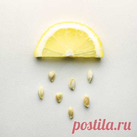 Удивительные свойства лимонных косточек | Всегда в форме!