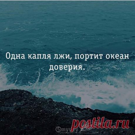 «Новое» — карточка пользователя Светлана М. в Яндекс.Коллекциях