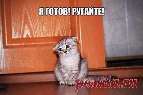 (427) Pinterest
