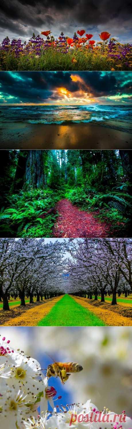 Фантастические фото природы / Всё самое лучшее из интернета