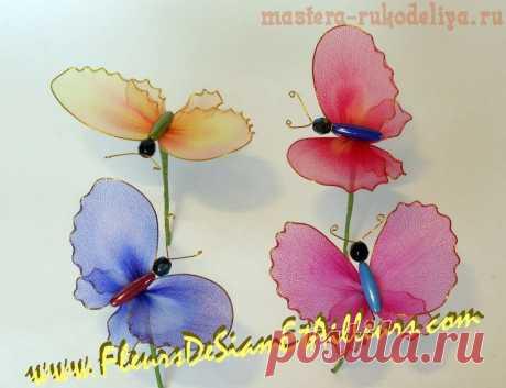 Мастер-класс: Бабочка из капроновых колготок