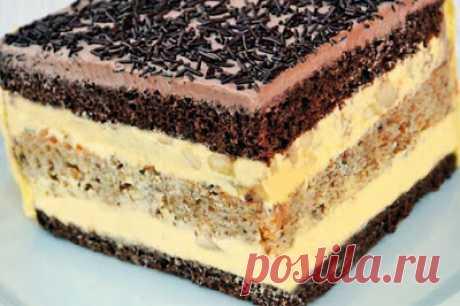 Кулинарочка: Торт «Огни Парижа» и рецепт чрезвычайно нежного заварного крема