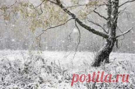 Сегодня 01 ноября в народном календаре Иванов день, Проводы осени