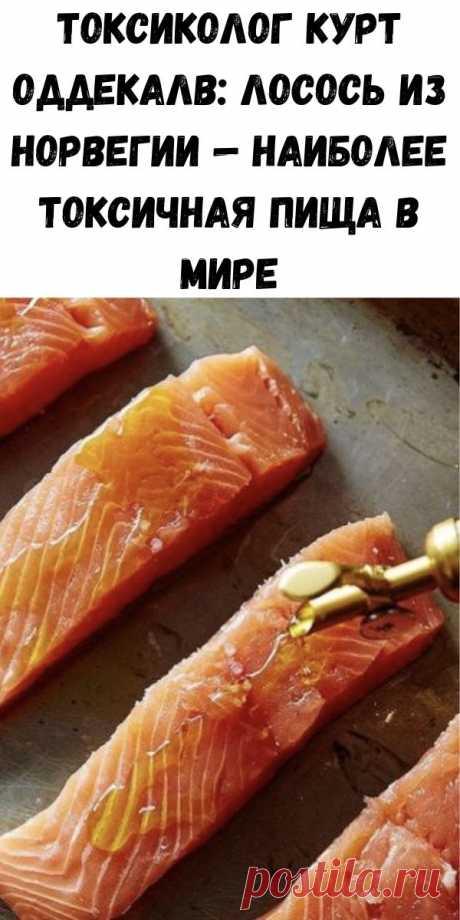 Токсиколог Курт Оддекалв: лосось из Норвегии — наиболее токсичная пища в мире - Счастливые заметки