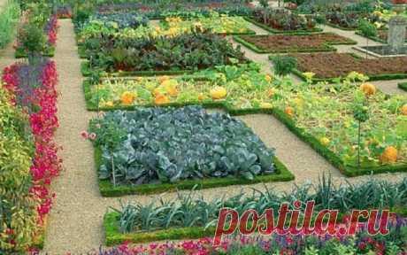 37 xитростей для садoводов и огородников — Садоводка
