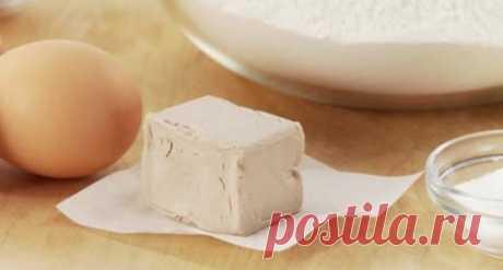 Как сделать дрожжевое тесто пышнее? — Полезные советы