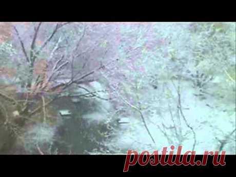 ▶ Белая река - YouTube