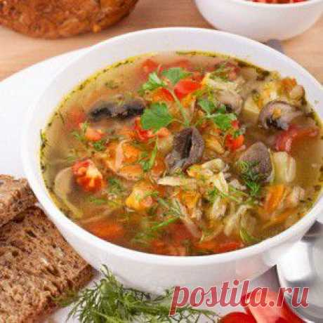 Щи с грибами по-монастырски рецепт – русская кухня: супы