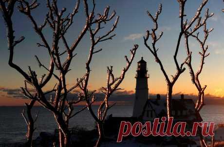 ФОТО ДНЯ. Ветки деревьев, покрытые ледяной коркой после ледяного дождя на фоне маяка Портленда в парке Форт-Уильямс, США. Этот маяк расположен на мысе Элизабет на пути в гавань города Портленд. Он был построен в 1791 году и является старейшим маяком в штате Мэн.