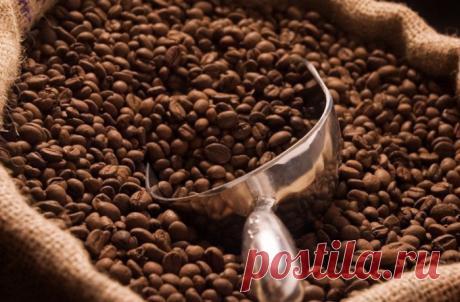 Делаем домашний кофе как в кофейне: 8 советов бариста