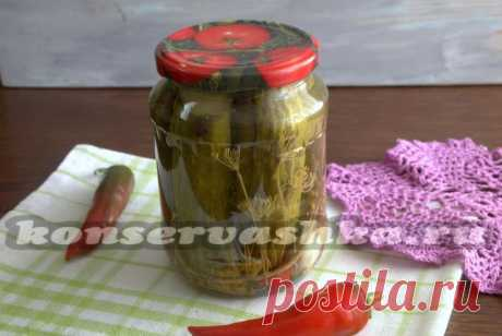 Spicy pickles - the recipe for the winter