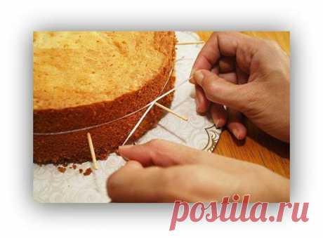 Как аккуратно разрезать бисквит на коржи 🎂🎂 | Оригинальные торты и пирожные | Яндекс Дзен