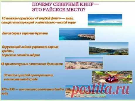 ИНВЕСТИРУЙТЕ В СВЕТЛОЕ БУДУЩЕЕ, ПРИОБРЕТАЯ  ЖИЛЬЕ НА СЕВЕРНОМ КИПРЕ!  Получите вид на жительство при покупке недвижимости на Северном Кипре. Забудьте о необходимости оформлять виз . Подарите своим детям возможность получить английское образование по цене от 2500 евро в год! Это откроет новые перспективы для получения работы за границей. СОЗДАЙТЕ ИДЕАЛЬНЫЕ УСЛОВИЯ ДЛЯ ЖИЗНИ ВАШЕЙ СЕМЬИ. в экологически чистом районе на побережье Средиземного моря! мой скайп-nelya0912