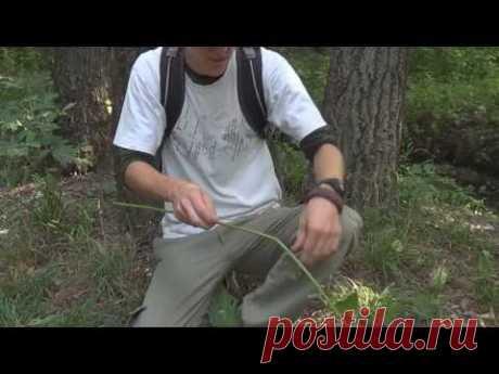 Веревка из крапивы - Вариант 1 - (Natural Cordage)