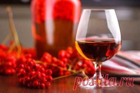 Рецепты настоек из красной рябины на водке, спирту и коньяке