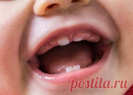8 главных вопросов о прорезывании первых зубов у детей Если ваш малыш старше трех месяцев, топ вопросов о его развитии возглавляет «Какие зубы лезут первыми у ребенка?». Разберемся, что нужно знать об этом процессе.