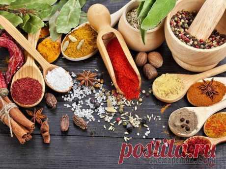 Потрясающая аптечка из специй по Аюрведе Индийская кухня известна во всем мире оригинальными вкусами своих блюд, а все благодаря специям, пряностям и всевозможным травам, которым в этой стране придается особое значение. А ведь помимо вкусовы...