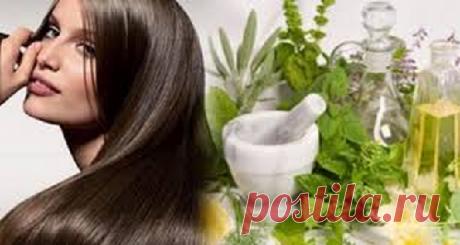 Рецепты натурального шампуня - Народная медицина - медиаплатформа МирТесен