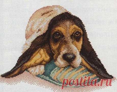 Вышивка крестом собака. Вышивка крестом собака такса  